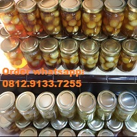 Supplier Madu Bawang 0812.9133.7255